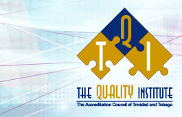 The Quality Institute